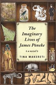 Imaginary lives of James Pomeke