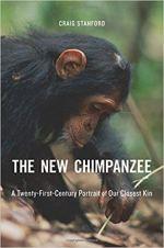 new chimpanzee
