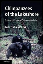 chimpanzees of the lakeshore