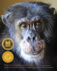the-chimpanzee-chronicles